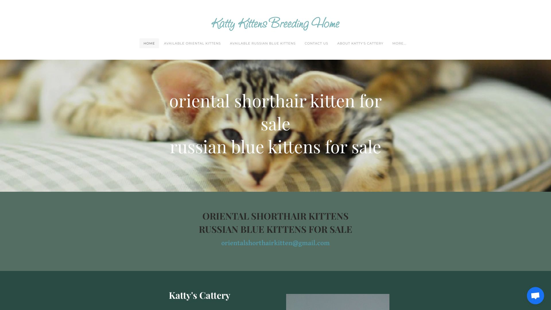 orientalshorthair.company.com